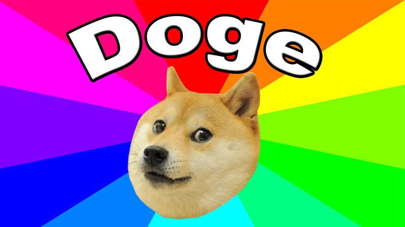 doge head